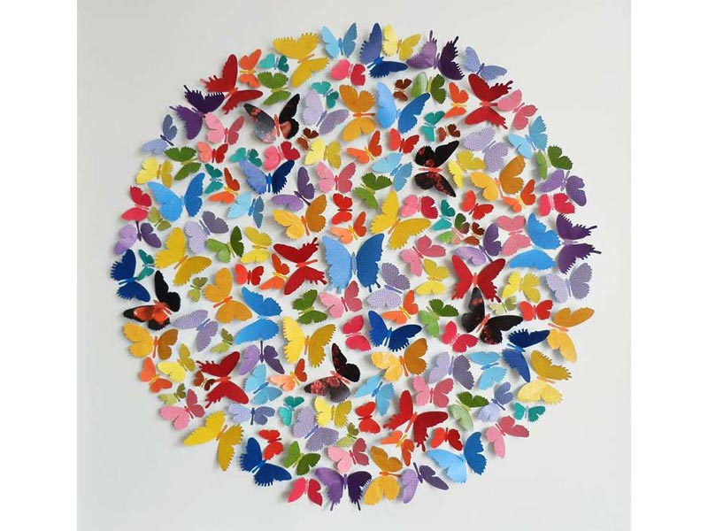 ButterflyBallCollage-SILC