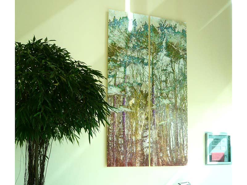 Art-Rental-Subscription-Schemes-Trees-KALI