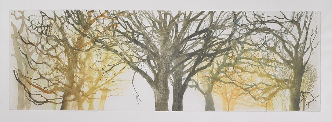 Susan Andreae - Treeforms 1