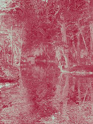 Hugh Hamshaw Thomas - Lakes Edge (Strawberry) 2019