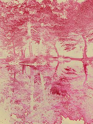 Hugh Hamshaw Thomas - Pink Lake - Sweet Arcadia 2017
